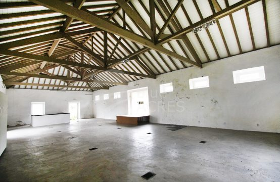 5001 | Warehouse, office, shop and backyard, between Óbidos and Peniche