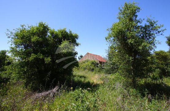 3004 | Terreno com pequena casa, em aldeia perto de Bombarral e Óbidos