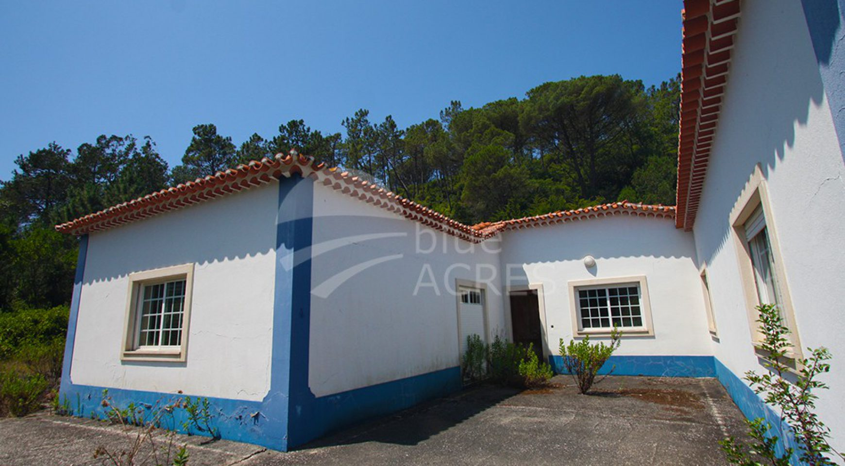 1019, small farm Óbidos, 4 bedrooms, annex with living room and kitchen