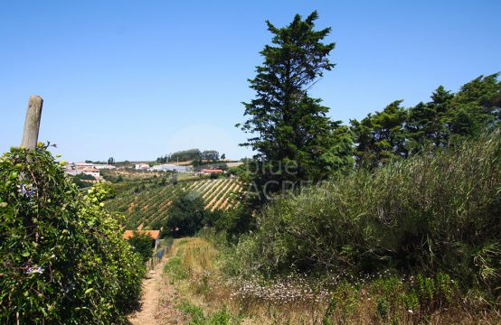 3005 | Plot for construction, 5 minutes from Óbidos, in the small village of Usseira