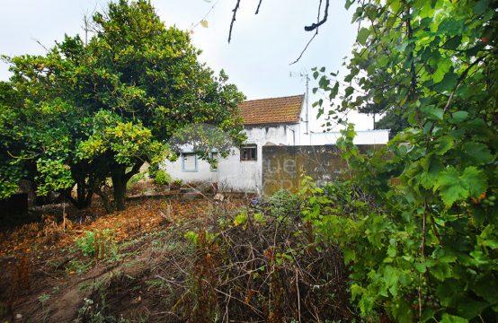 1034 | Propriedade rural, com moradia, armazém e anexo, Salir de Matos
