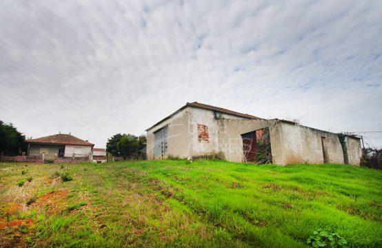 1042 | Propriedade no campo, com moradia, armazém e anexos, Bombarral