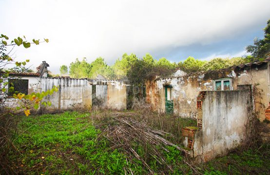 3007 | Ruins to recover, 5 minutes from downtown Caldas da Rainha