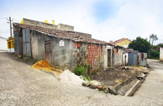1079 | Set of small houses and attachments, to recover, Delgada