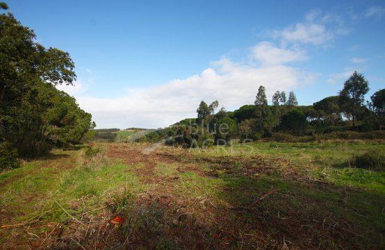 3015 | Terreno rústico com 2,7ha a cerca de 5 minutos da Lagoa de Óbidos